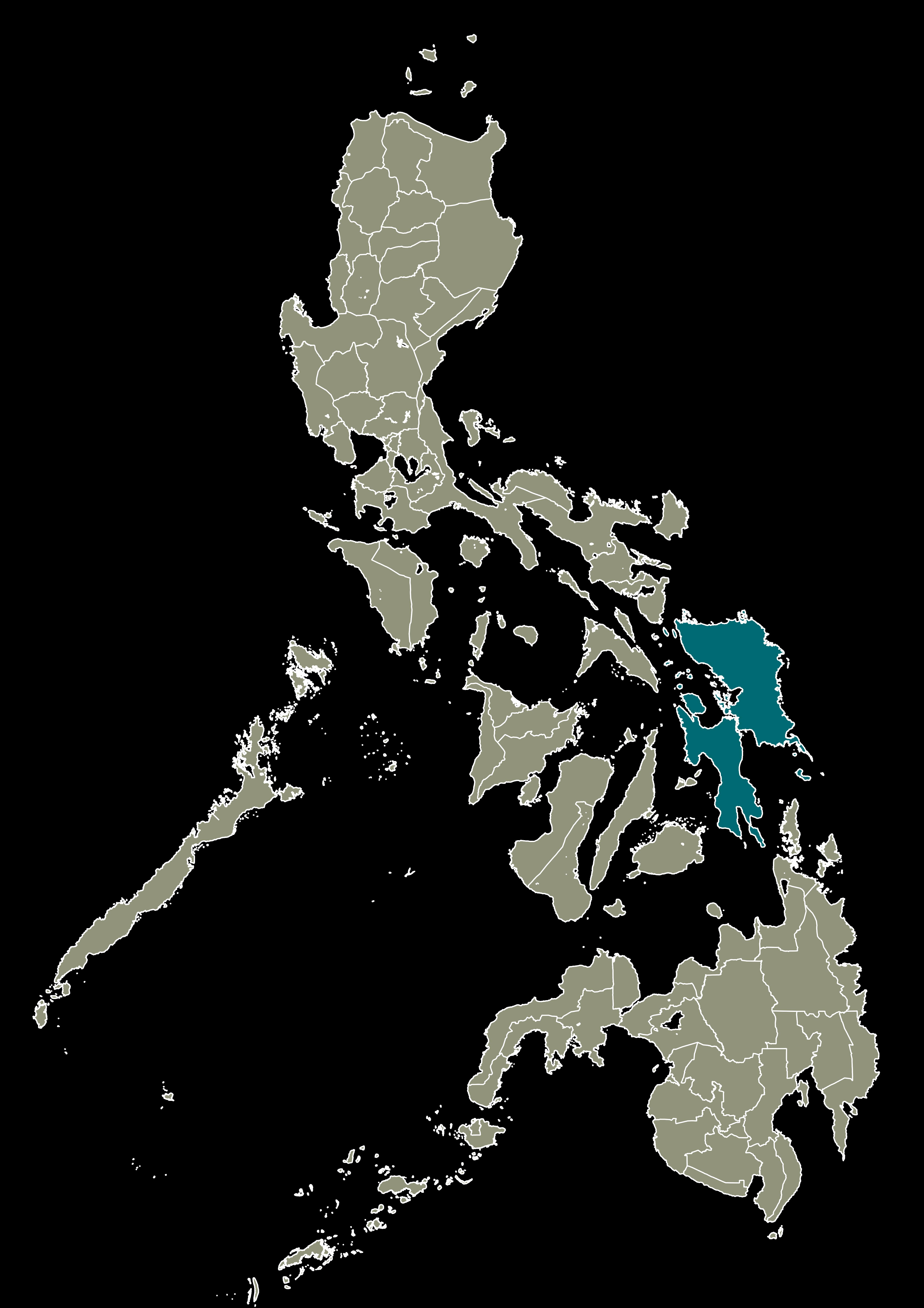 Region VIII