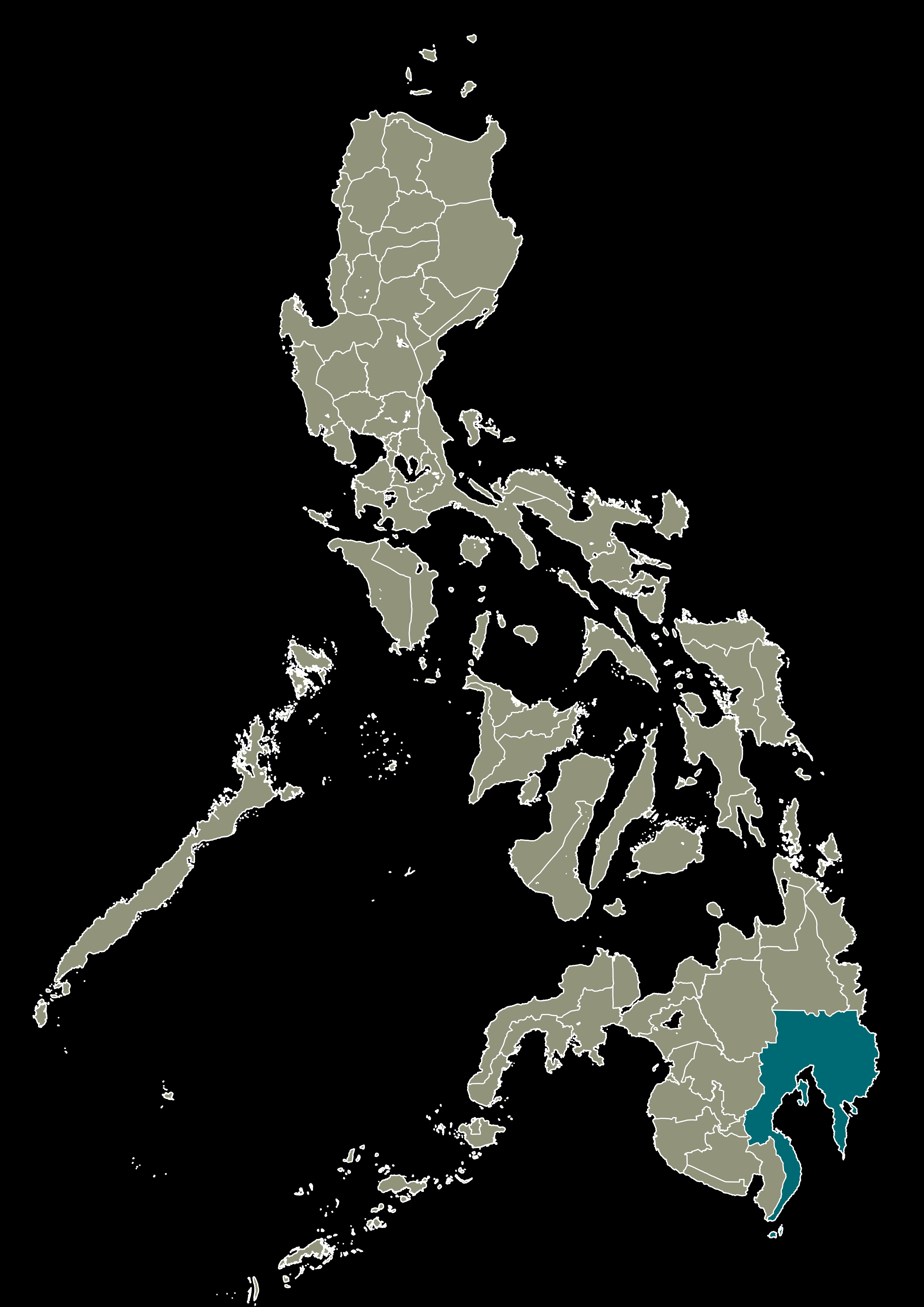 Region XI