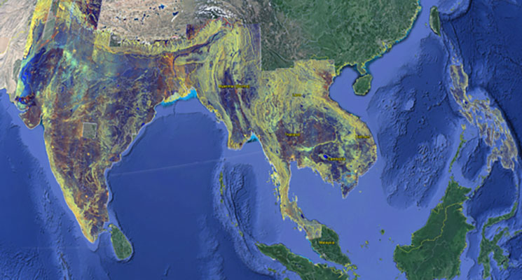 satellite-imagery-to-soon-enable-large-scale-monitoring-of-asias-rice-areas