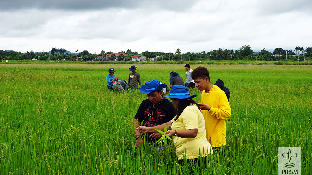 Field exercise during PRISM Crop Health Training for AEWs